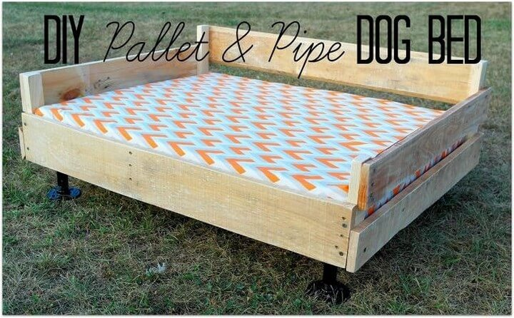 pipe dog bed, pipe pallet bed, pipe pet bed
