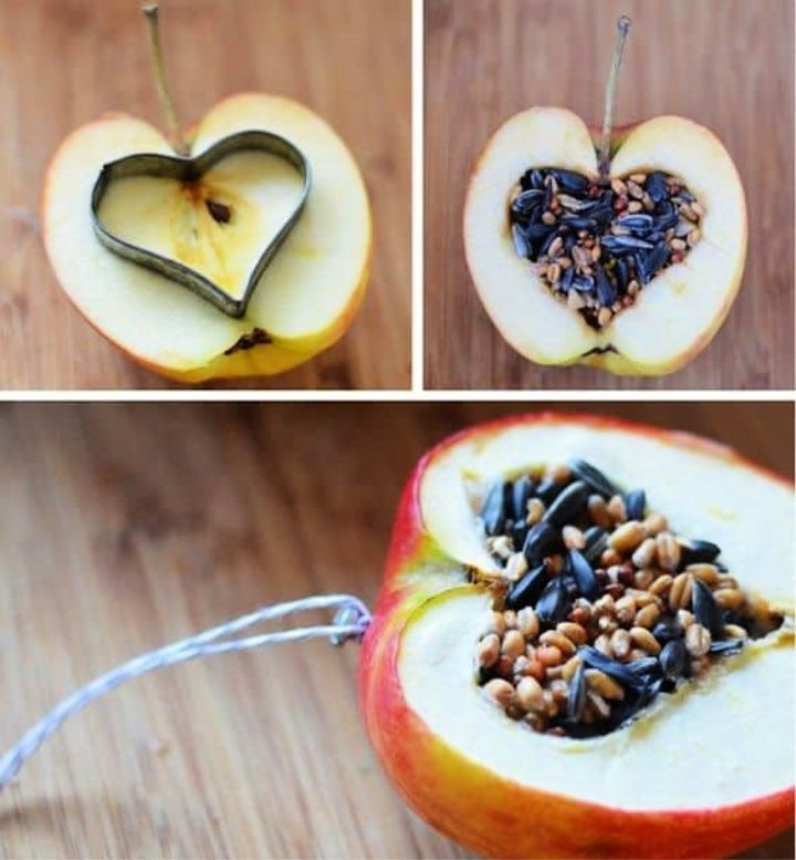 DIY Carved Apple Feeder Tutorial