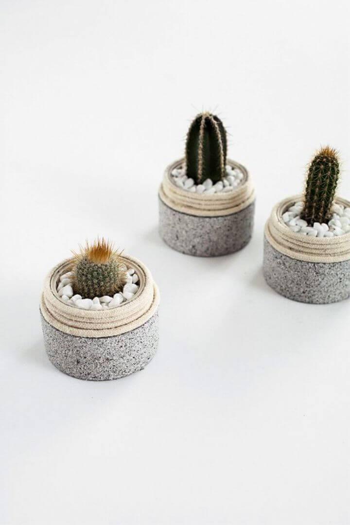 DIY Mini Cactus Planters