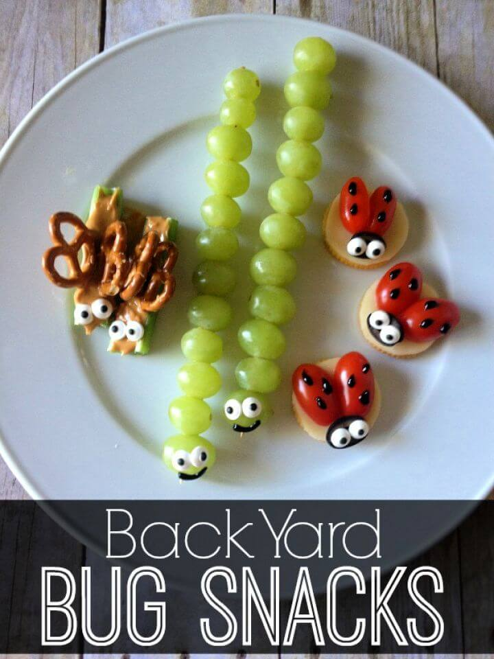 Back Yard Bug Snacks