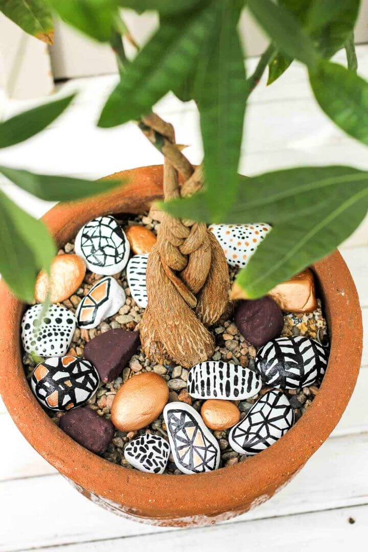 Potted Plant Accents Hand Painted Rocks