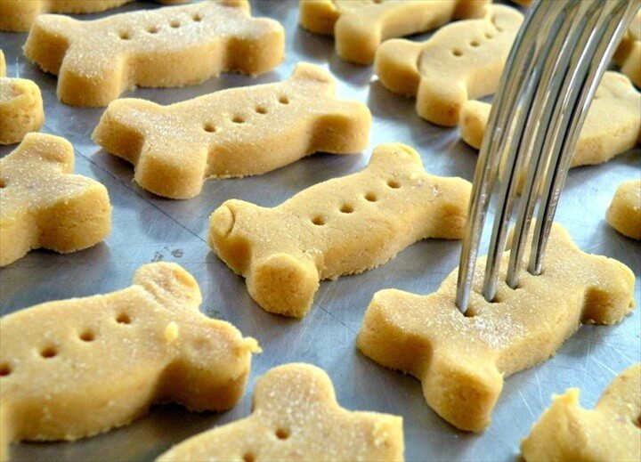 Pumpkin Biscuits Dog Treats