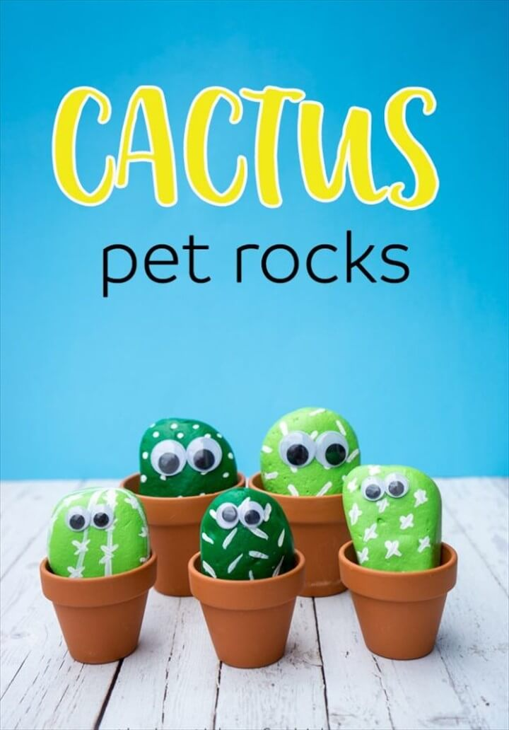 Absolutely Easy Pet Cactus Rocks DIY Crafts For Kids To Do Over The Weekend