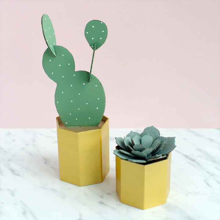 DIY Cactus Pots Tutorial