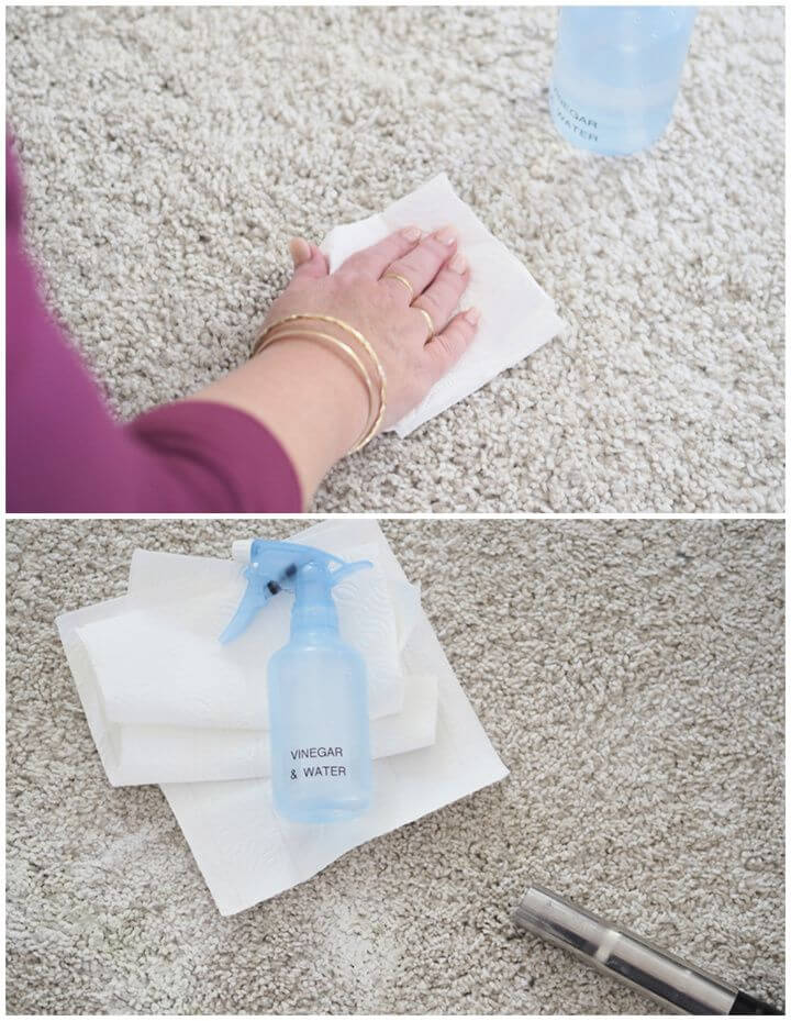 Homemade Carpet Cleaner – Pet Stains
