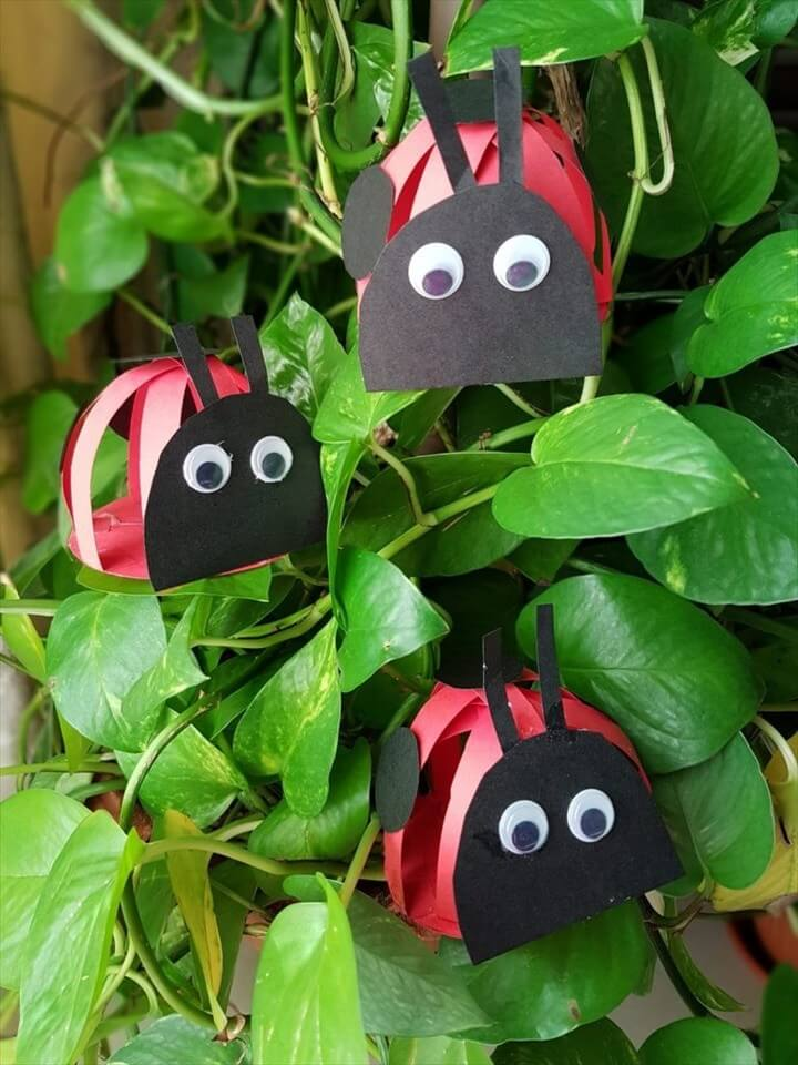 Kid Summer Crafts Angry Ladybugs DIY