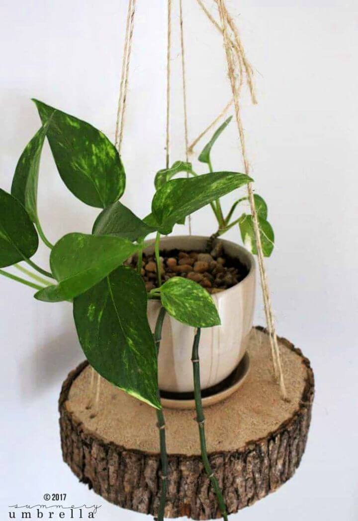 Super Easy DIY Hanging Planter Using A Wood Slice