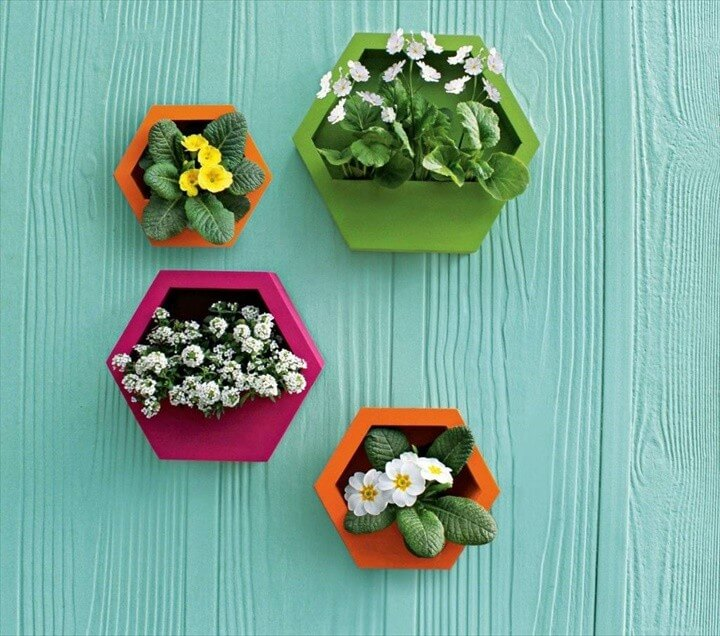 DIY Project Hexagonal Wall Planters