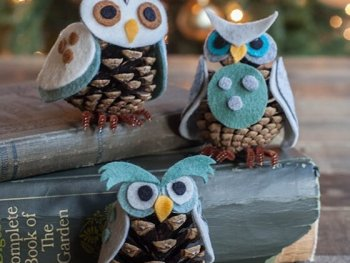 DIY Pine Cone Owl Ornaments, pine cone ideas, pine cone table decorations, bleached pine cone crafts, diy pinecone mice, pinecone crafts to sell, pine cone christmas tree ornaments, mini pine cone crafts, pine cone decoration ideas, diytomake.com, diy home decor, diy for home decor, ideas for diy home decor, diy home decor ideas, diy home decor crafts, diy home decor projects, diy home decor on pinterest, diy home decor pinterest, diy home decor dollar tree, diy home decor easy, diy home decor cheap, diy home decor ideas living room, diy home decor rustic, diy home decor craft ideas, diy home decor ideas budget, diy home decor christmas, diy home decor modern, diy home decor for christmas, diy home decor projects cheap, diy home decor blogs, diy home decor youtube, diy home decor hacks, diy home decor signs, diy gothic home decor, diy home decor on a budget, easy diy home decor projects, diy home decor ideas cheap, diy rustic home decor ideas, diy home decor paintings, diy elegant home decor, diy home office decor, diy home decor projects pinterest, diy home decor to sell, diy home decor gifts, nautical diy home decor, diy luxury home decor, diy home decor recycled, diy home decor tutorials, diy home decor tips, diy home decor ideas pinterest, best diy home decor youtube channels, diy home decor farmhouse, diy home decor book, diy home decor kits, diy home decor ideas bedroom, diy home decor with pallets, diy home decor mason jars, diy home decor christmas gifts, diy home decor 2017, diy home decor craft ideas wall, diy home decor living room, diy home decor art, diy upcycled home decor, diy home decor accessories, diy home decor canvas art, diy home decor from recycled materials, diy christmas home decor 2018, diy home decor step by step, unique diy home decor ideas, diy home decor ideas easy and cheap, diy home decor magazine, 33 cool diy home decor ideas, diy home decor kitchen, quirky diy home decor, diy home xmas decor, diy home decor with wood, diy home decor 