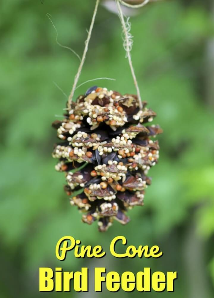 DIY Top Wing Bird Feeder, diy home decor projects, diy home decor crafts, diy home decor pinterest, modern diy home decor, diy home decor ideas living room, diy home decor online, diy hacks home decor, diy ideas for the home, Easy Paper Crafts, Easy Diy Crafts, Diy Paper, Fun Crafts, Decorative Paper Crafts, Amazing Crafts, Craft Projects For Adults, Crafts For Teens To Make, Art Projects, Beauty & Health, Crafts,Decor, DIY Fashion, DIY Ideas And Crafts For Women, DIY Project Ideas For Men Gifts, Ideas By Project Type Kids, Lighting, Mason Jar Ideas, Project Ideas Sewing, Uncategorized, Upcycled And Repurposed Crafts, diy crafts tutorials, diy crafts for home decor, diy crafts youtube, diy crafts to sell, diy crafts with paper, diy crafts for girls, easy diy crafts, diy crafts for kids, diy craft ideas for home decor, craft ideas for adults, craft ideas with paper, craft ideas to sell, craft ideas for the home, craft ideas for children, diy crafts with paper, craft ideas for kids, diy craft, diy craft christmas, diy craft table, halloween diy craft, diy craft for adults, diytomake.com