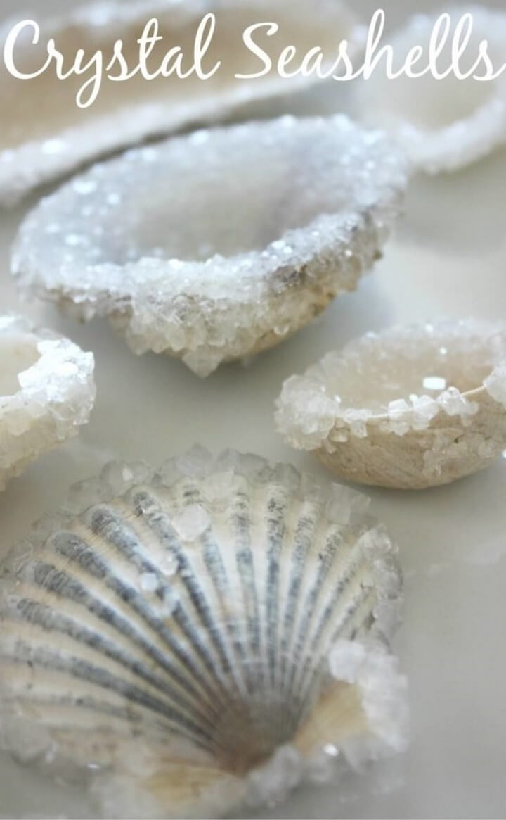 Easy To Make Crystal Encrusted Seashells, diy crafts with paper, diy crafts tutorials, diy crafts for girls, easy diy crafts, diy crafts youtube, diy crafts for kids, diy crafts for home decor, diy crafts to sell, diy projects for home, easy diy projects for home, diy projects for men, diy projects for bedroom, fun diy projects for adults, diy projects for kids, diy projects youtube, diy projects electronics, diytomake.com