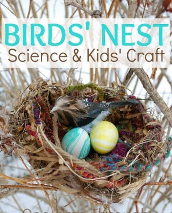 DIY Birds Nest Science Kids Craft, diy kids craft, diy kids crafts, diy kids craft table, diy craft ideas clothes, diy craft ideas crepe paper, diy kid friendly christmas crafts, diy craft ideas dollar tree, diy craft ideas easy, tea party-diy-craft-kids-espresso cups, diy crafts kid friendly, diy craft ideas for home decor, diy craft ideas for adults, diy craft ideas for room decor, diy craft ideas for christmas, diy craft ideas for school, diy craft ideas for christmas gifts, diy craft ideas for gifts, diy craft ideas for birthday gift, diy craft ideas for toddlers, diy craft ideas for birthday parties, diy craft ideas for wall decor, diy craft ideas for diwali, diy craft ideas for father's day, diy craft ideas for halloween, diy craft ideas for valentines, diy craft ideas home decor, diy craft ideas home, diy & crafts ideas magazine, diy craft ideas newspaper, diy craft ideas on pinterest, diy kid crafts pinterest, diy craft ideas pinterest, diy craft ideas pdf, diy craft ideas paper, diy craft ideas pics, diy ideas for craft room, diy craft ideas using ice cream sticks, diy craft ideas videos, diy craft ideas with paper, diy craft ideas with plastic bottles, diy craft ideas with cardboard, diy craft ideas with newspaper, diy craft ideas with glass jars, diy craft ideas with straws, diy craft ideas with buttons, diy craft ideas with cement, diy craft ideas with balloons, diy craft ideas with shells, diy craft ideas youtube, best-diy-crafts-kids-christmas 10, diy children's day crafts, diy crafts ideas easy, diy childrens halloween crafts, diy crafts ideas notebook, diy crafts ideas paper, diy crafts ideas step by step, diy crafts ideas with paper, wonderful-kids-crafts-diy-felt-christmas-tree, diy crafts ideas youtube, diy ideas for craft table, diy waste clothes craft ideas, diytomake.com