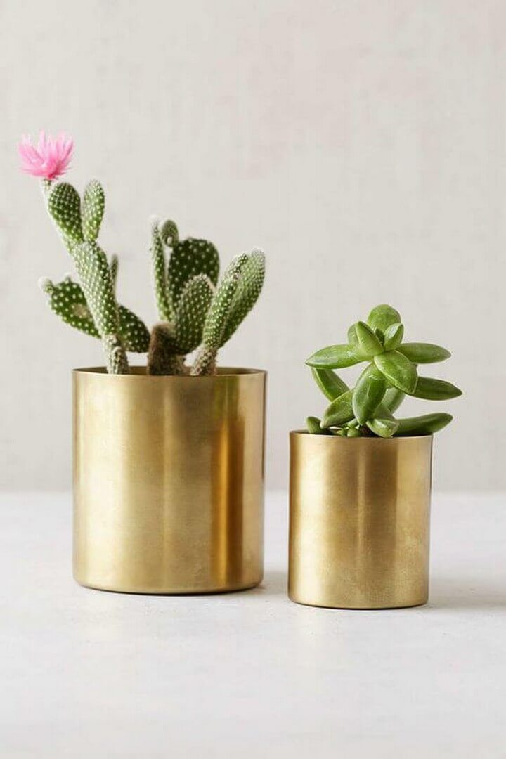 DIY Golden Pots Home Decor, diy home, diy home decor, diy home decor ideas, diy home projects, diy home decor crafts, diy home automation, diy home pregnancy test, diy home security systems, diy home decor projects, diy home decor ideas living room, diy home center, diy home improvement, diy home bar, diy home gym, diy home theater, diy home kits, diy home renovation, diy home alarm systems, diy home security camera, diy home theater speakers, diy home server, diy home solar system, diy home addition, diy home alarm, diy home audio, diy home automation ideas, diy home air purifier, diy home audio system, diy home air freshener, diy home automation hub, diy home assistant, diy home art, diy home addition cost, diy home automation systems, diy home accessories, diy home arcade, diy home alarm systems uk, diy home air filter, diy home and garden, diy home art projects, diy home building, diy home bar ideas, diy home bar plans, diy home building kits, diy home battery bank, diy home battery backup, diy home business, diy home blog, diy home brewing system, diy home battery, diy home bar cabinet, diy home bowling alley, diy home building plans, diy home brew, diy home brewery, diy home builder, diy home bar designs, diy home book, diy home basketball court, diy home crafts, diy home camera system, diy home cleaners, diy home christmas decor, diy home cinema, diy home construction, diy home charging station, diy home cloud storage, diy home center burbank, diy home compost bin, diy home center locations, diy home center promo code, diy home climbing wall, diy home coffee bar, diy home compost, diy home cleaning solutions, diy home command center, diy home center tujunga ca, diy home cockpit, diy home decoration ideas, diy home design, diy home depot, diy home decor signs, diy home desk, diy home design software, diy home dance floor, diy home diffuser, diy home deodorizer, diy home decor pinterest, diy home decor gifts, diy home decor india, diy home defense, diy home decor blogs, diy home decor trends 2020, diy home decor 2019, diy home elevator, diy home energy, diy home extension, diy home energy audit, diy home entertainment center, diy home elevator plans, diy home electrical, diy home elevator kit, diy home escape room, diy home enema, diy home experiments, diy home energy monitor, diy home entertainment system, diy home electrical projects, diy home entertainment center plans, diy home edit labels, diy home essentials, diy home exfoliating scrub, diy home exercise equipment, diy home energy system, diy home furniture, diy home facial, diy home fragrance, diy home face mask, diy home fix, diy home forge, diy home foundation, diy home fire sprinkler system, diy home furniture ideas, diy home fries, diy homefit, diy home foot soak, diy home floor cleaner, diy home fountain, diy home flooring, diy home first aid kit, diy home furnishings, diy home fireplace, diy home file server, diy home floor plans, diy home gym equipment, diy home garden, diy home giveaway, diy home generator, diy home gym mirror, diy home gym flooring, diy home gifts, diy home golf simulator, diy home greenhouse, diy home games, diy home gym storage, diy home gender test, diy home generator transfer switch, diy home garage, diy home goods, diy home games for adults, diy home gift ideas, diy home garage gym, diytomake.com