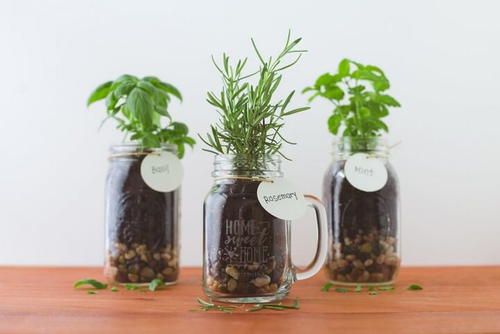 DIY Mason Jar Herb Plant For Home Decor, diy home, diy home decor, diy home decor ideas, diy home projects, diy home decor crafts, diy home automation, diy home pregnancy test, diy home security systems, diy home decor projects, diy home decor ideas living room, diy home center, diy home improvement, diy home bar, diy home gym, diy home theater, diy home kits, diy home renovation, diy home alarm systems, diy home security camera, diy home theater speakers, diy home server, diy home solar system, diy home addition, diy home alarm, diy home audio, diy home automation ideas, diy home air purifier, diy home audio system, diy home air freshener, diy home automation hub, diy home assistant, diy home art, diy home addition cost, diy home automation systems, diy home accessories, diy home arcade, diy home alarm systems uk, diy home air filter, diy home and garden, diy home art projects, diy home building, diy home bar ideas, diy home bar plans, diy home building kits, diy home battery bank, diy home battery backup, diy home business, diy home blog, diy home brewing system, diy home battery, diy home bar cabinet, diy home bowling alley, diy home building plans, diy home brew, diy home brewery, diy home builder, diy home bar designs, diy home book, diy home basketball court, diy home crafts, diy home camera system, diy home cleaners, diy home christmas decor, diy home cinema, diy home construction, diy home charging station, diy home cloud storage, diy home center burbank, diy home compost bin, diy home center locations, diy home center promo code, diy home climbing wall, diy home coffee bar, diy home compost, diy home cleaning solutions, diy home command center, diy home center tujunga ca, diy home cockpit, diy home decoration ideas, diy home design, diy home depot, diy home decor signs, diy home desk, diy home design software, diy home dance floor, diy home diffuser, diy home deodorizer, diy home decor pinterest, diy home decor gifts, diy home decor india, diy home defense, diy home decor blogs, diy home decor trends 2020, diy home decor 2019, diy home elevator, diy home energy, diy home extension, diy home energy audit, diy home entertainment center, diy home elevator plans, diy home electrical, diy home elevator kit, diy home escape room, diy home enema, diy home experiments, diy home energy monitor, diy home entertainment system, diy home electrical projects, diy home entertainment center plans, diy home edit labels, diy home essentials, diy home exfoliating scrub, diy home exercise equipment, diy home energy system, diy home furniture, diy home facial, diy home fragrance, diy home face mask, diy home fix, diy home forge, diy home foundation, diy home fire sprinkler system, diy home furniture ideas, diy home fries, diy homefit, diy home foot soak, diy home floor cleaner, diy home fountain, diy home flooring, diy home first aid kit, diy home furnishings, diy home fireplace, diy home file server, diy home floor plans, diy home gym equipment, diy home garden, diy home giveaway, diy home generator, diy home gym mirror, diy home gym flooring, diy home gifts, diy home golf simulator, diy home greenhouse, diy home games, diy home gym storage, diy home gender test, diy home generator transfer switch, diy home garage, diy home goods, diy home games for adults, diy home gift ideas, diy home garage gym, diytomake.com
