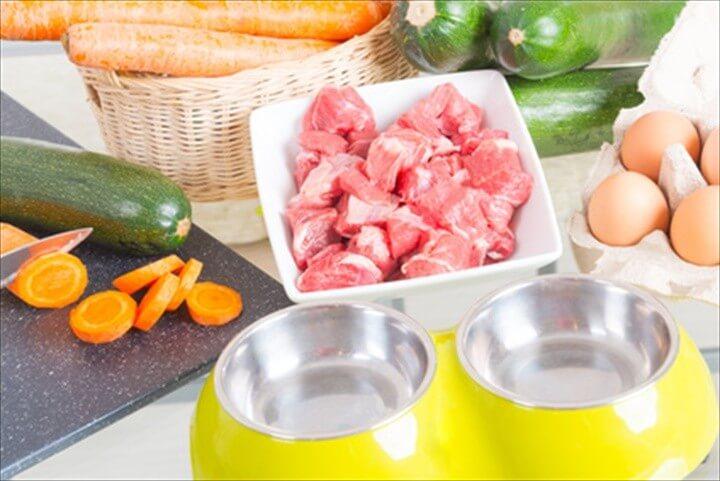 Creating A Raw Dog Food Recipe