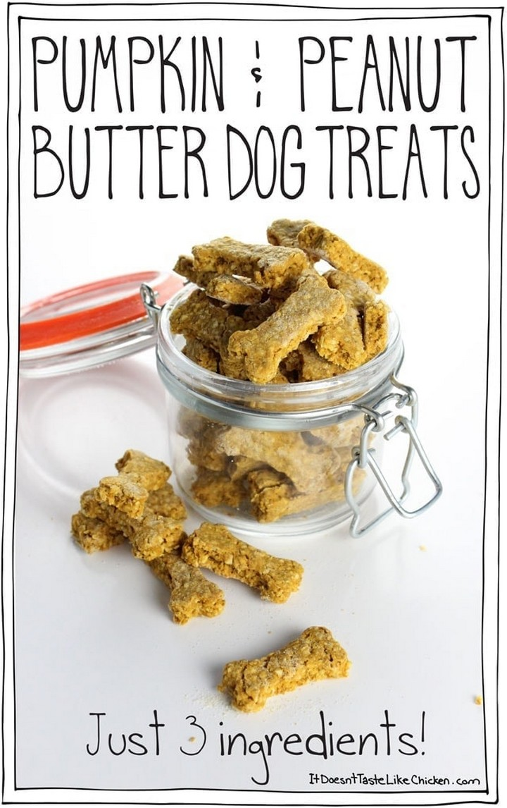 Pumpkin Peanut Butter Dog Treats just 3 ingredients