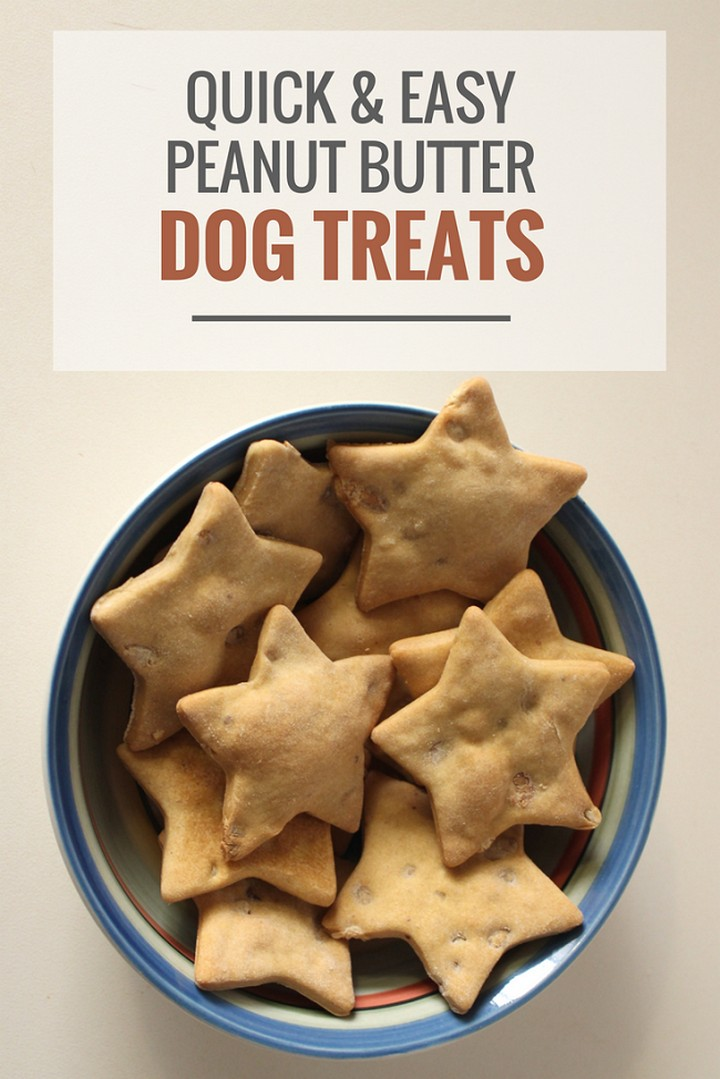 Quick Easy Peanut Butter Dog Treats