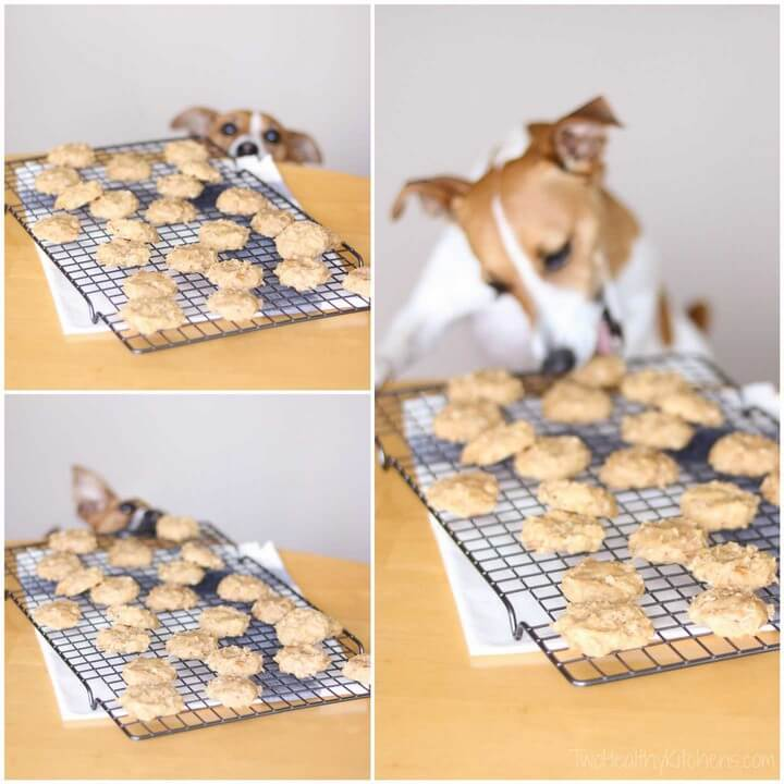 4 Ingredient Chicken and Biscuits Homemade Dog Treats