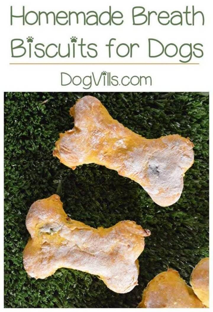 DIY Breath Biscuits For Dogs