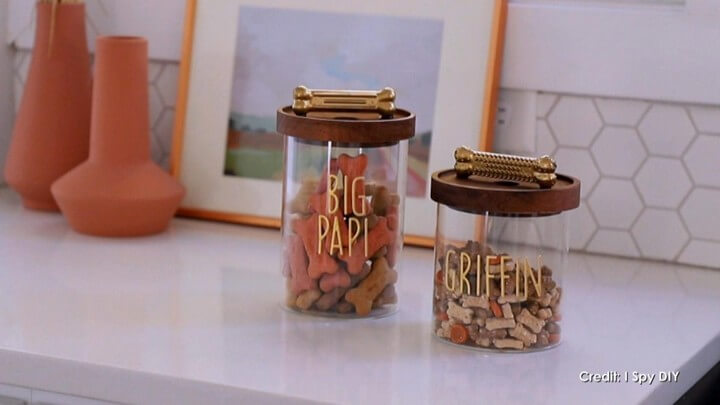DIY Dog Treat Container Personalized Leash Holder