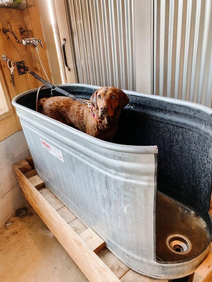 DIY Dog Wash Tutorial