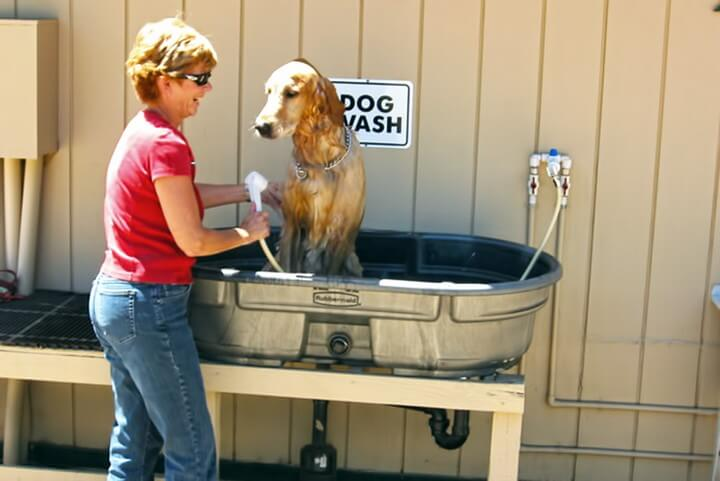 DIY Dog Washing Station
