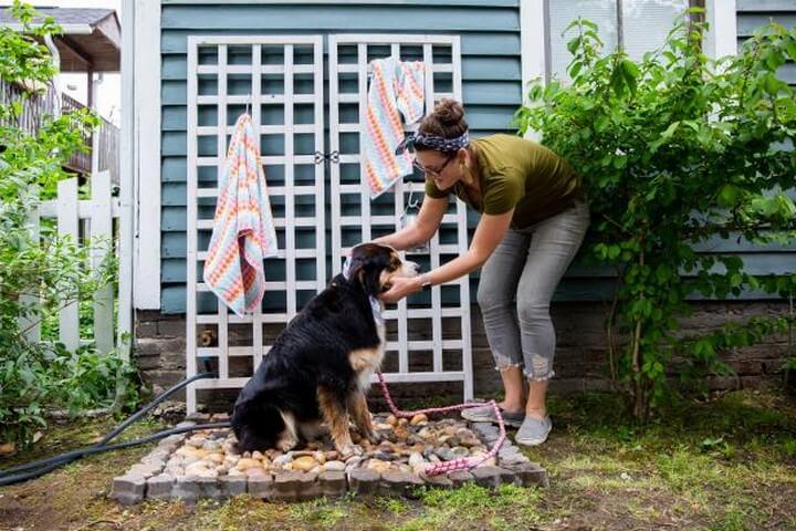 DIY Outdoor Dog Shower Idea