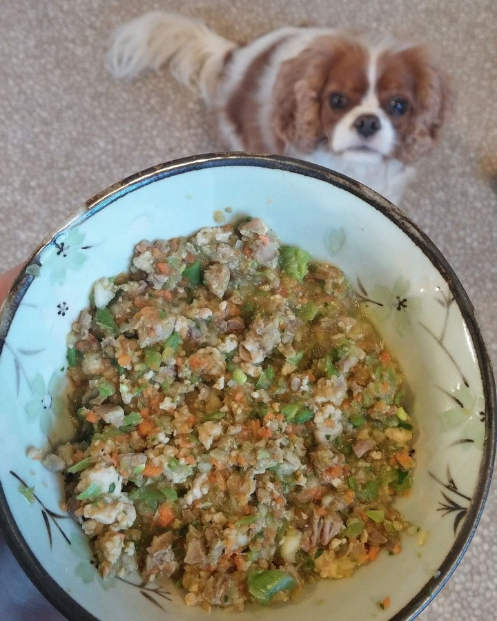 Homemade Dog Food Chicken and Heart Recipe