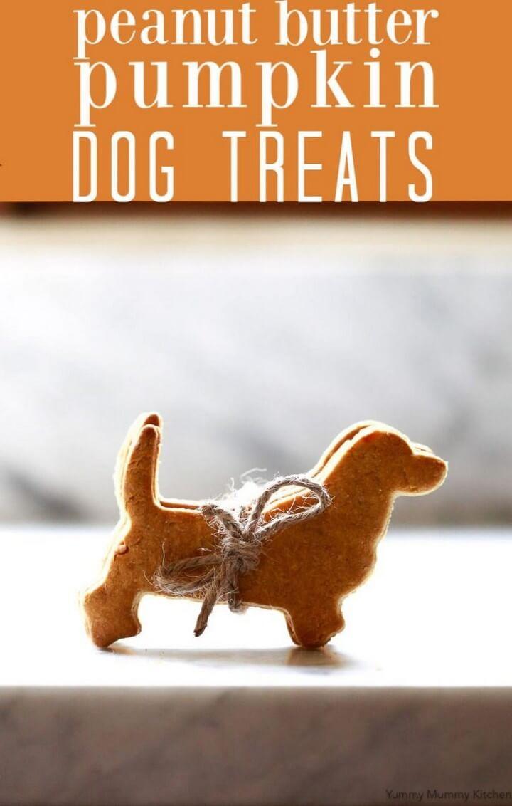 Homemade Pumpkin Peanut Butter Dog Treats Recipe