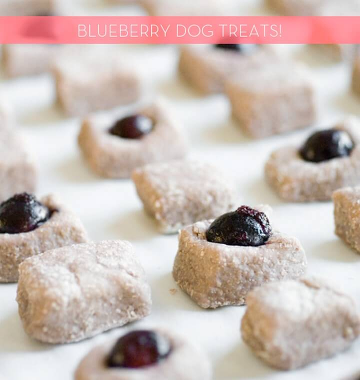How to Make Dog Treats A Simple Two Ingredients