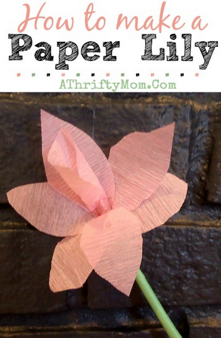 How to make a Paper Lily