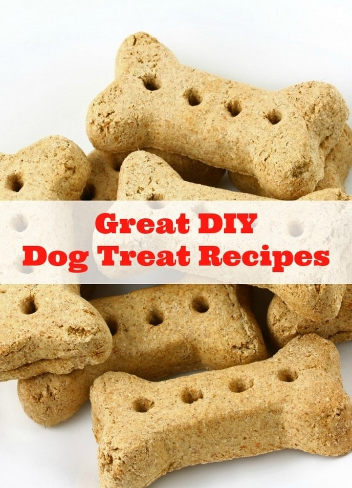 Our Dog Days of Summer and Great DIY Dog Treat Recipes