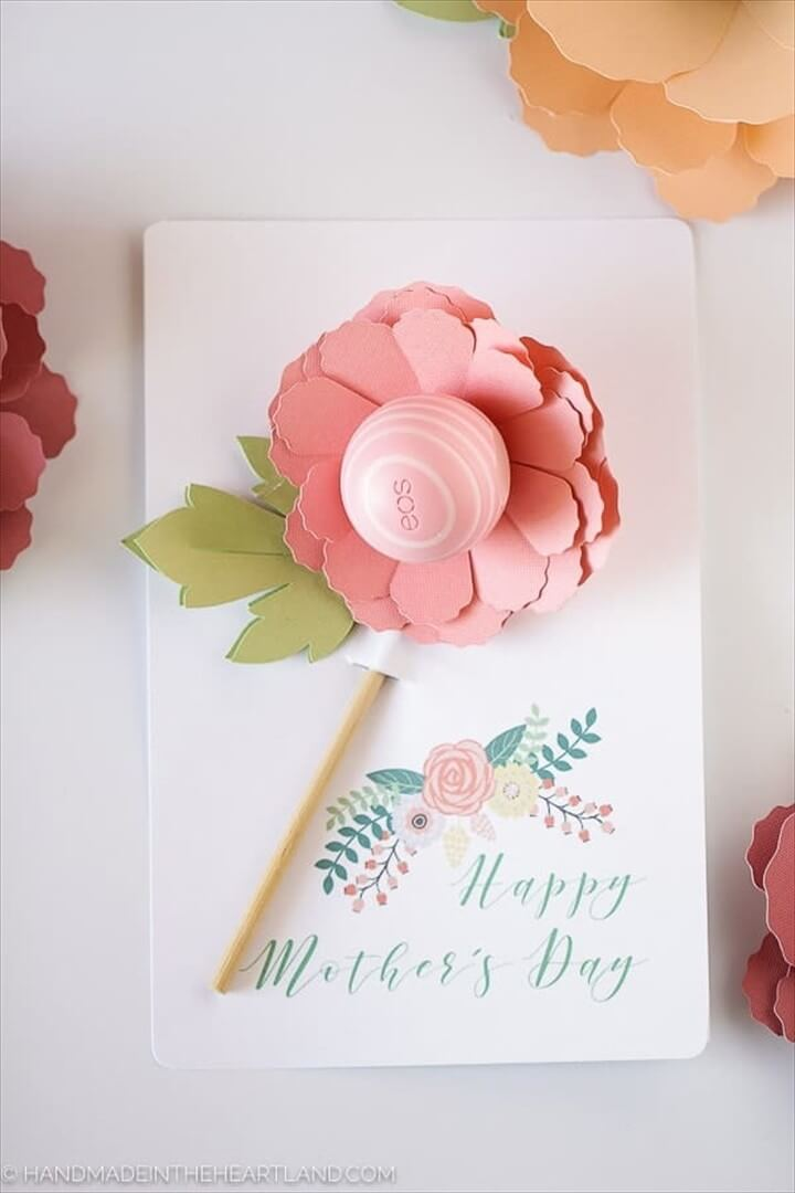 Mother's Day Eos Flower Gift