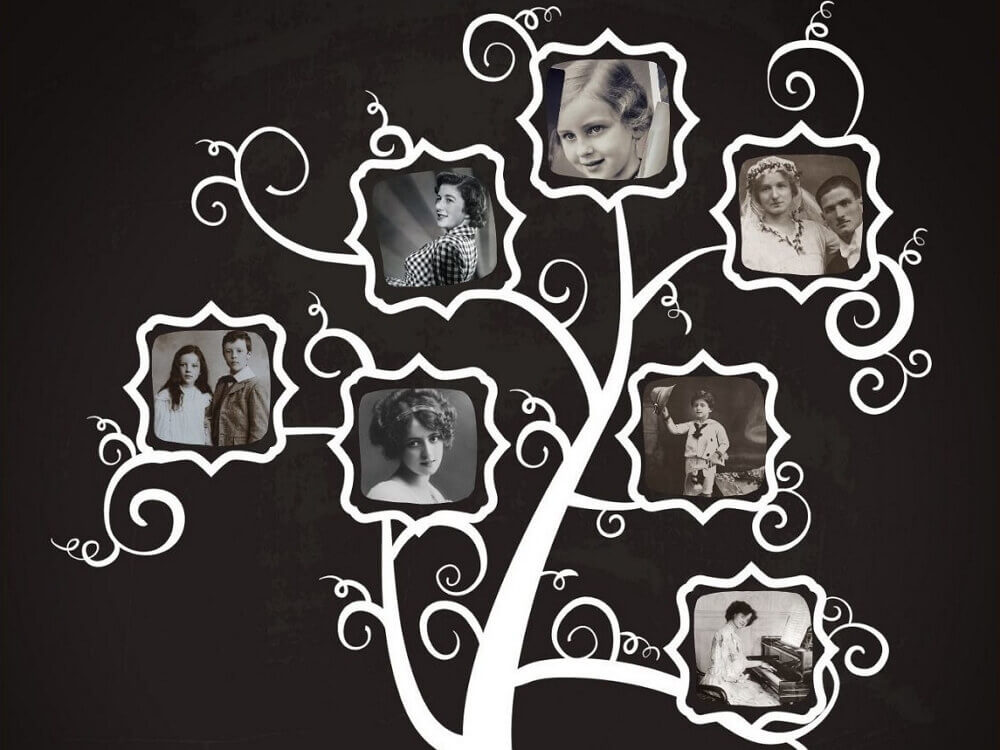 how to make a diy chalkboard family tree 1