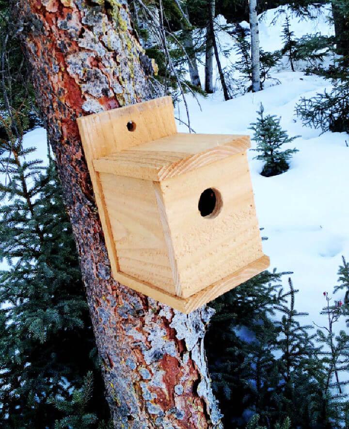 1 Modern Cedar Birdhouse