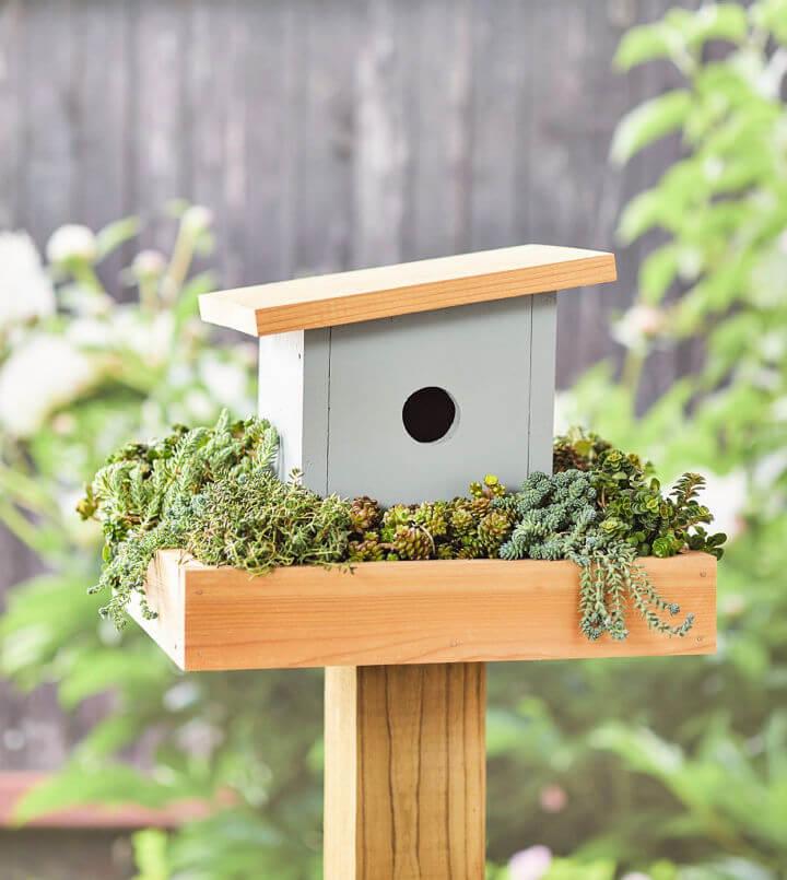 Build Your Own Birdhouse
