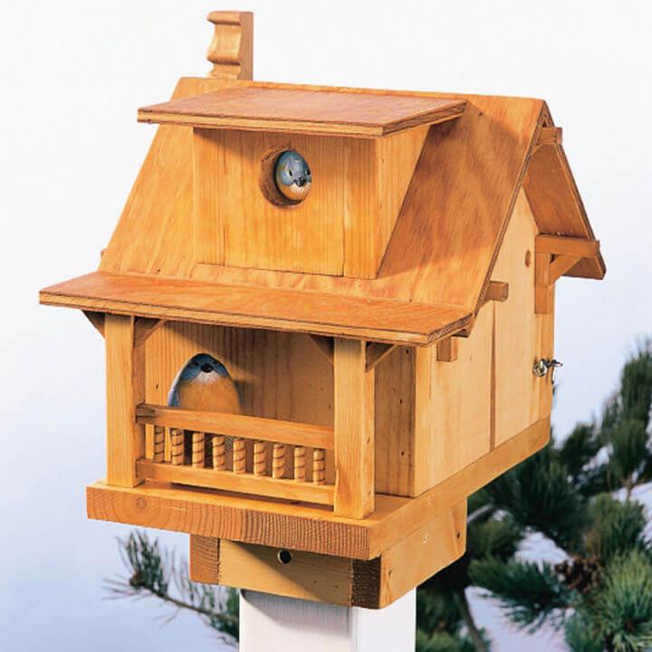 Build a Backyard Birdhouse