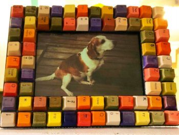 Colorful Dog Picture Frame