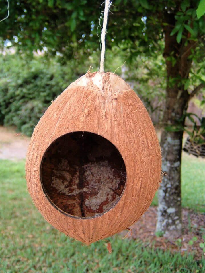 DIY Coconut Birdhouse