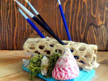 Driftwood Pen or Brush Holder