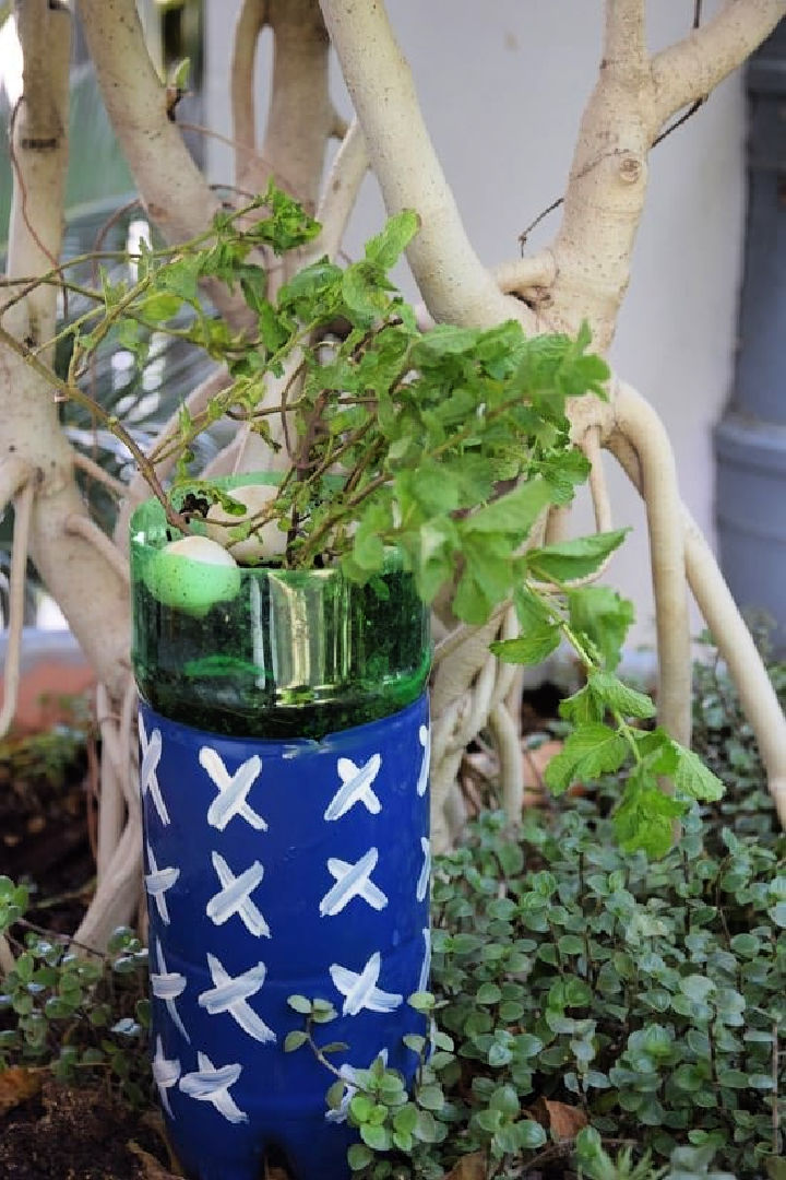 How To Make A Self Watering Planter Out Of A Soda Bottle