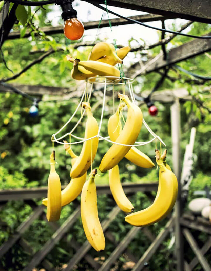 How to Make a Banana Chandelier