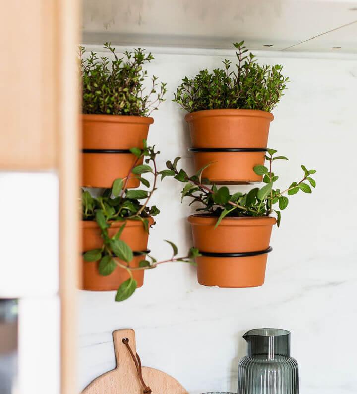 Indoor Herb Wall Garden