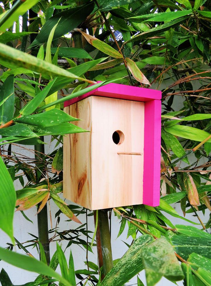 Modern DIY Birdhouse