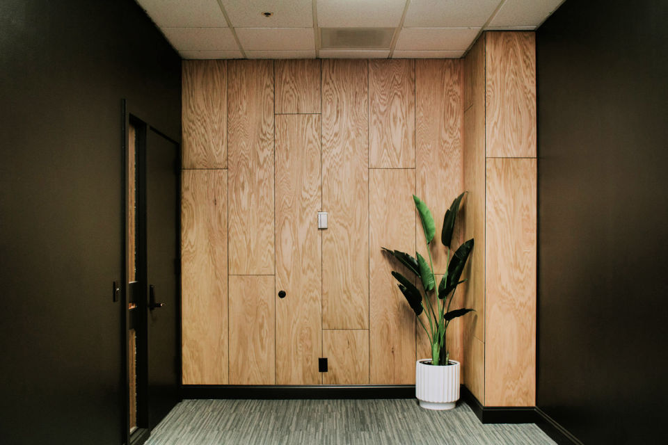 Oak Plywood Accent Wall