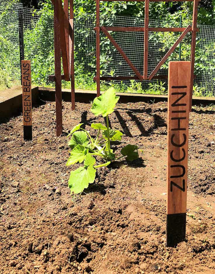 Plant Markers for Garden