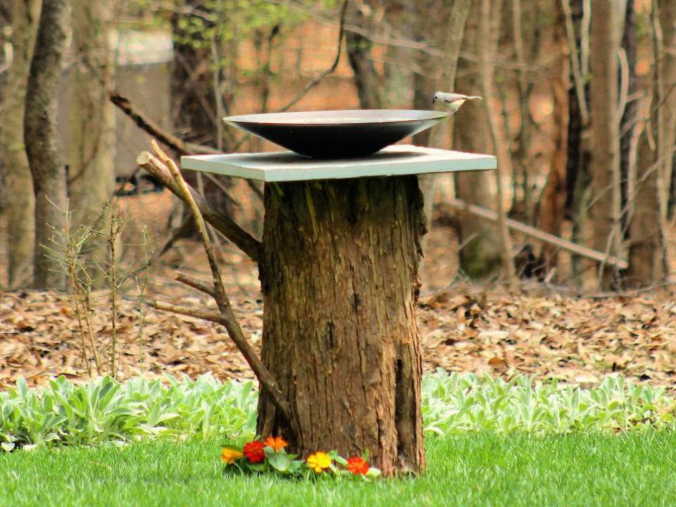 Turn a Tree Stump Into Birdbath