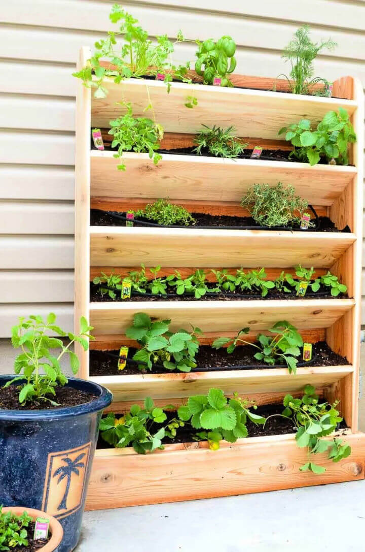 Vertical Garden with Drip Watering System