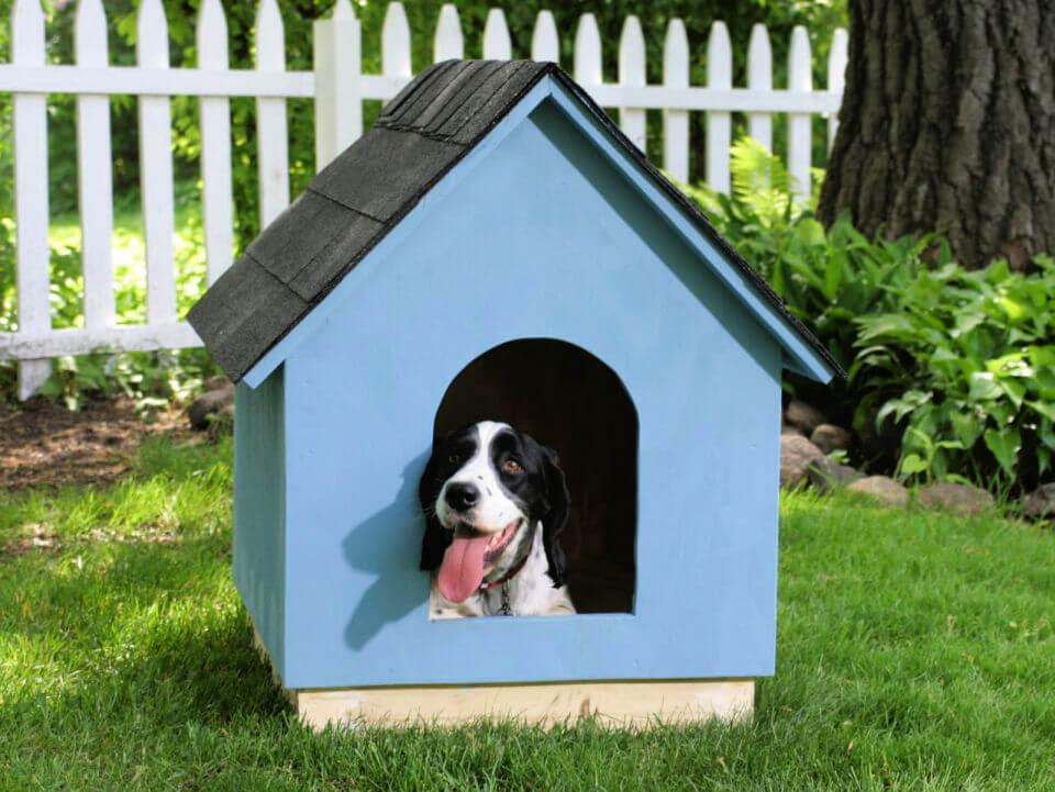 DIY Frame Dog House