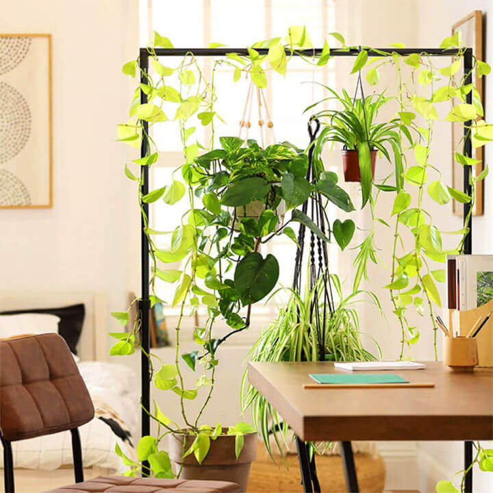 DIY Plant Room Divider